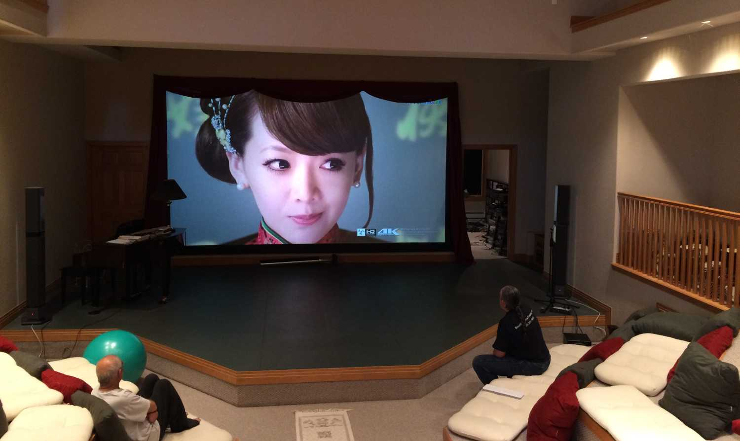 Large Venue Sony Laser Projector